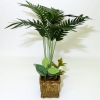 Wilhelmina Handcrafted Deluxe Palm Tree Floor Plant
